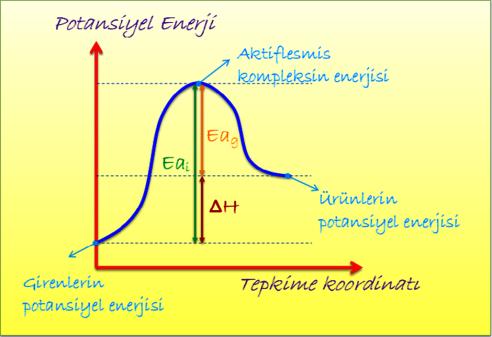 PE-TK_grafigi